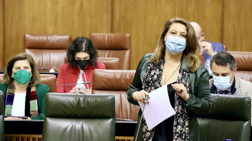 Carmen Crespo, ayer durante su intervención ante la cámara.