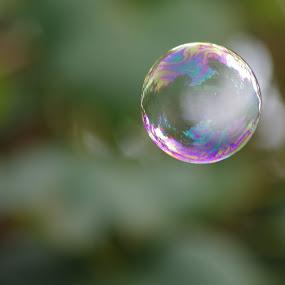 Bubble by Jenny Gandert - Artistic Objects Other Objects