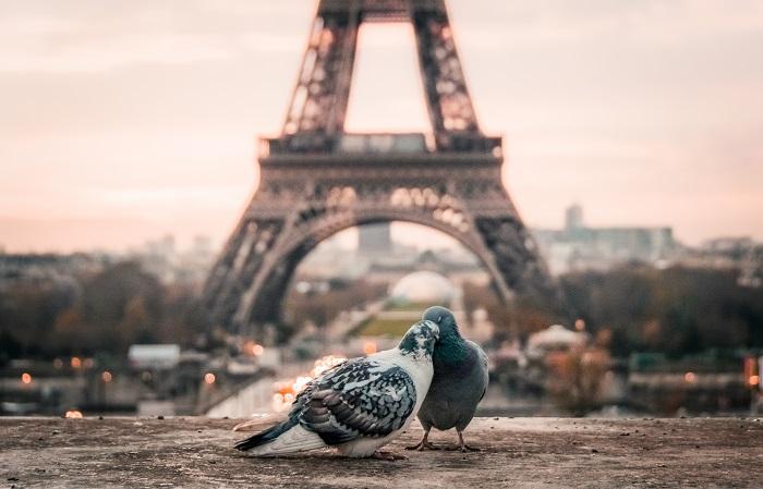 paris-amor.jpg