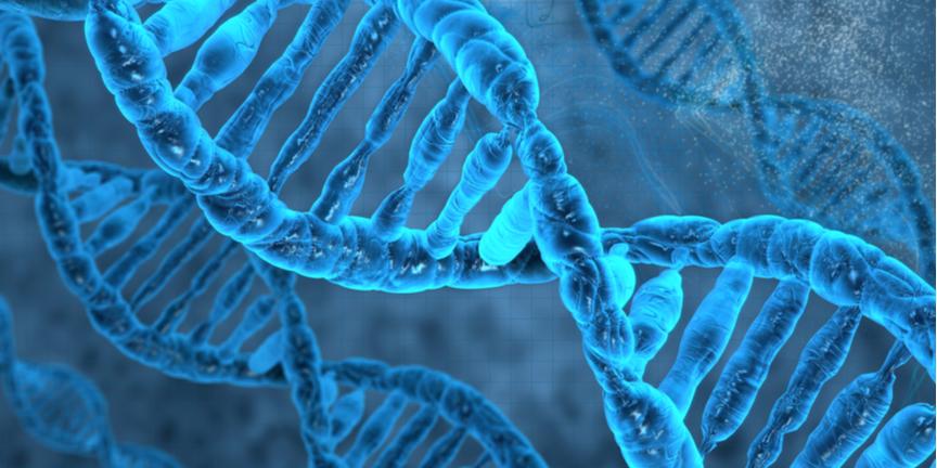 Echo-DNA-helix-in-blue