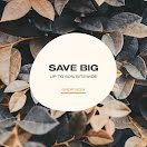 Save Big Monday - Instagram Post item