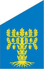 Blekinge fasadflagga 75 cm