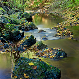 by Siniša Almaši - Nature Up Close Water ( water, up close, stream, nature, autumn, cascade, view, morning, landscape, light, river )