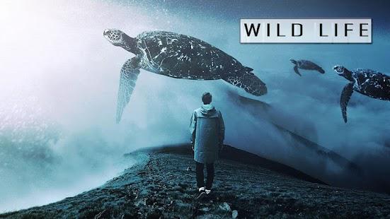 Wild Animal Photo Frame Editor Ideas - náhled