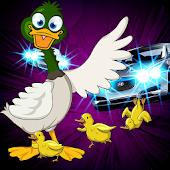 Freeway Ducks