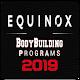 Equinox Download on Windows