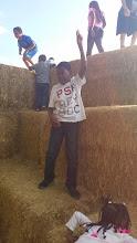 Photo: on the hay mountain