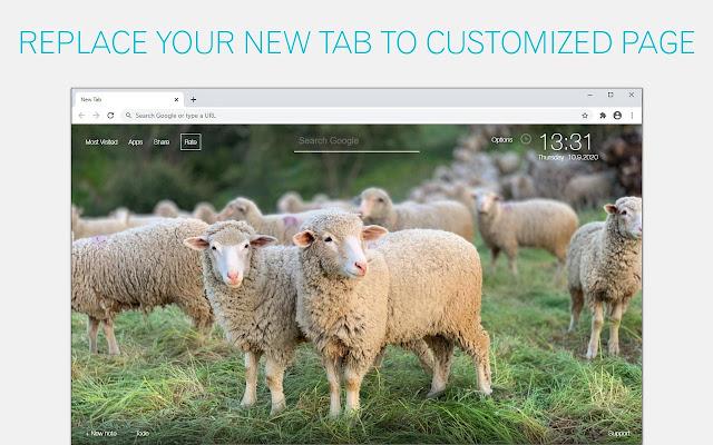 Sheep Wallpaper HD Sheeps New Tab