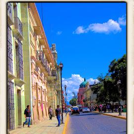 oaxaca, mexico by Jim Knoch - City,  Street & Park  Street Scenes