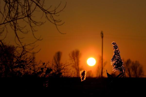 Al tramonto di Ethan Debattisti