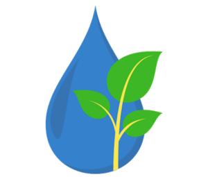 Nutreets, production fruits et légumes en aquaponie