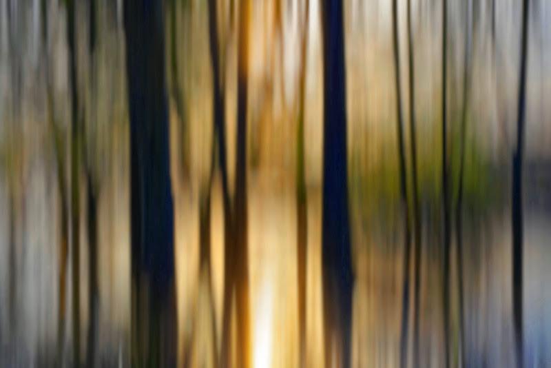 Tramonto astratto sull'acqua con alberi  di Yasis