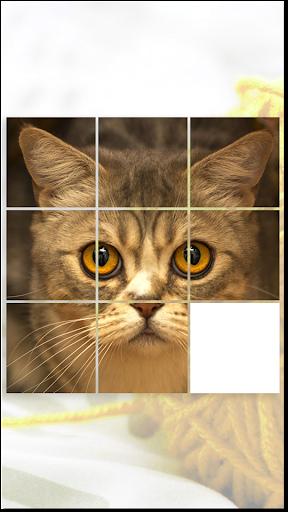 Cat Games Free Puzzles  screenshots 3