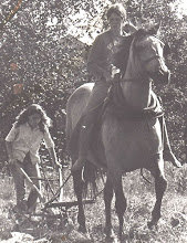 Photo: Carol ploughing, Shelagh on horseback - picture from Selina