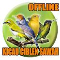 Suara Pikat Burung Kecil Paling Ampuh Mp3 icon