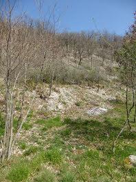 terrain à Laroque-des-Arcs (46)