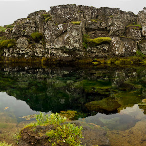 Relaxed by D L - Landscapes Waterscapes ( clear, water, iceland, clean, moss, rock, thingvellir )