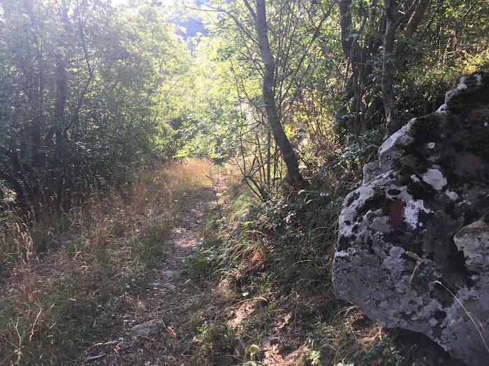 Suggestivo percorso nella riserva naturale di Poggio all'Olmo, Castigliocello Bandini, Tuscany