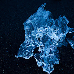 Icy Jewel by VAM Photography - Nature Up Close Other Natural Objects ( iceland, nature, ice, black beach, places, travel,  )
