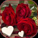 Lindas fotos de flores e rosas icon