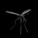 Mosquito Smash icon