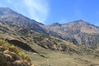 Photo: first of views of BrijGanj Dhura - 4666 meters from Marjhali
