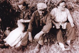 Photo: Hagyományőrző aratás: Fél Gézáné Gyurcsovics Ilona, Nagy Károly, Nagy Benőné Mészáros Karolina