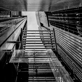 Glass and Steel by Jim Merchant - Buildings & Architecture Architectural Detail ( black and white, depth of field, glass, architecture, steel )