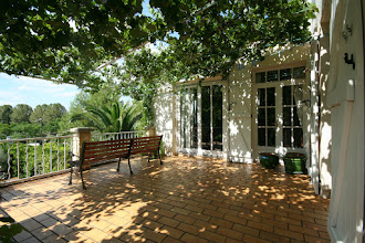 Photo: The terrace, with loads of grapes hanging down, and soon, loads of wisteria flowers twice yearly. UPDATE: Vine now been cut back, and Wisteria being directed to do the same job...