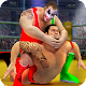 Stars Wrestling Revolution 2017: Real Punch Boxing (game)