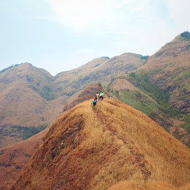 climb the mountain by Sống Đẹp - Uncategorized All Uncategorized ( bình liêu, mốc 1305 )