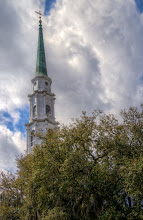 Photo: Looking up - Savannah, Georgia.