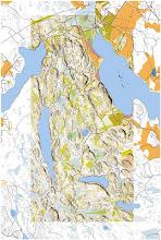Photo: Salmi recreation area, Vihti. Contains data of the National Land Survey of Finland (www.mml.fi). Contours, cliffs, areas of open and dense vegetation from Karttapaullautin, other objects from topographic terrain database (maastotietokanta)