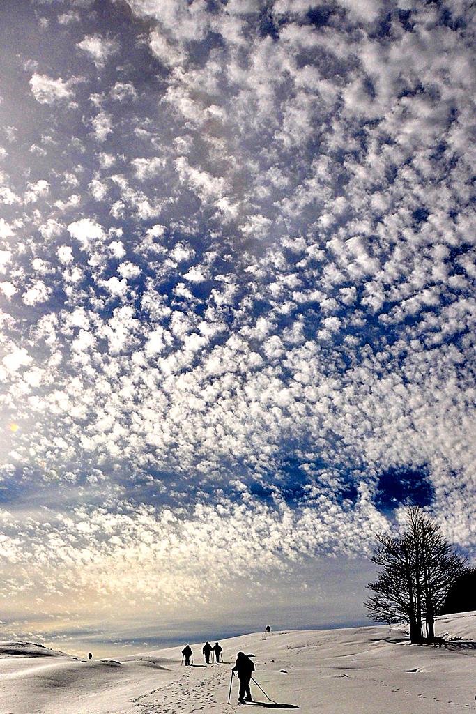Batuffoli di nuvole di titi15