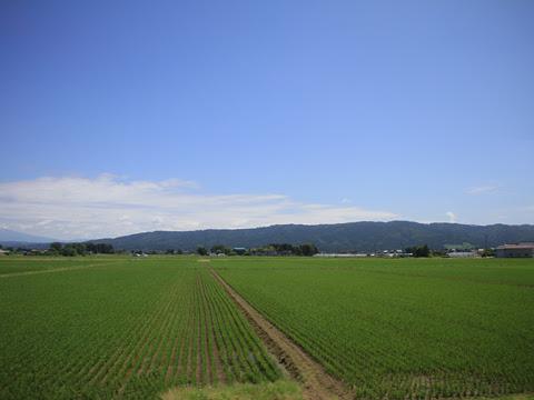 JR東日本 陸羽西線 キハ110_02