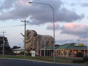 Photo: Day 6: A fiberglass sculpture of a merino sheep
