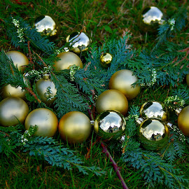 Globes meeting by Ciprian Apetrei - Public Holidays Christmas ( reflection, globes, green, christmas, brittany )