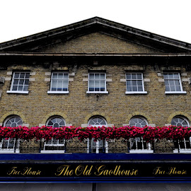 The Old Gaolhouse by DJ Cockburn - Buildings & Architecture Other Exteriors ( hampshire, england, listed building, flowers, britain, sign, historical, heritage, wetherspoons, history, winchester, building, the old gaolhouse, jewry street, uk, façade, window, pub, wall, free house, architecture )