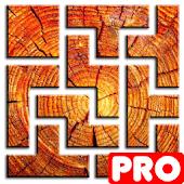 PICTRIS Pro