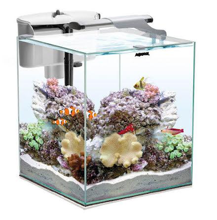 AquaEl Nano Reef Duo 49L
