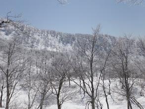 モッカ谷上部の様子