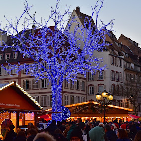 Christmas Market @ Strasbourg by Marco Bertamé - Public Holidays Christmas ( europe, christmas market, capital, city, december, place gutenberg, market, village, sunset, france, chrisrmas, alsace, light, portugues, marché de noël, strasbourg, crowded,  )