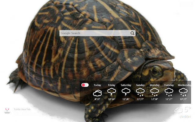 Turtle New Tab, Wallpapers HD
