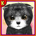 KittyZはあなたのバーチャルペット、猫の世話です icon