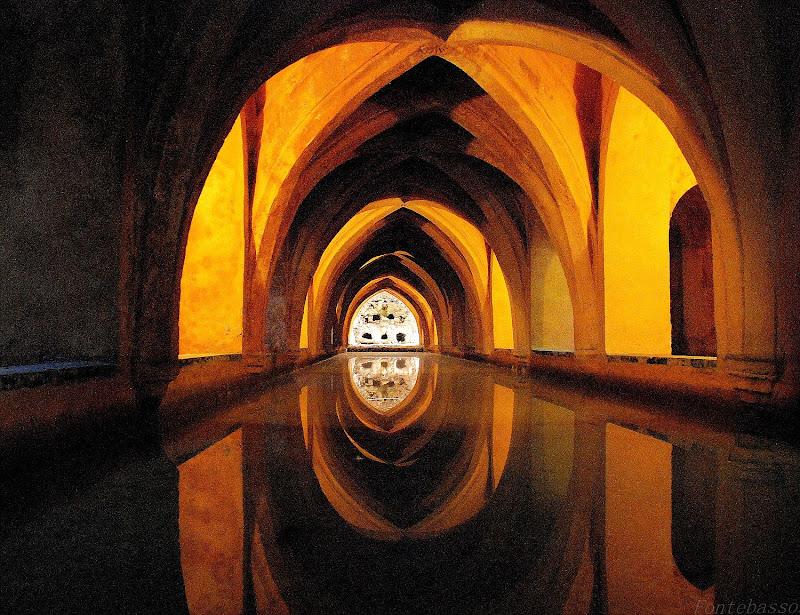 Riflessi di uno specchio d'acqua di Luciano Fontebasso