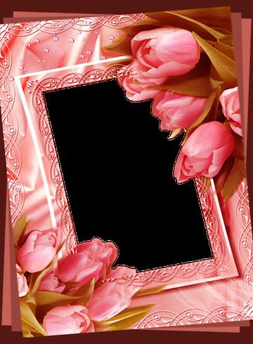 Flower Photo Frames - Revenue & Download estimates - Google Play ...