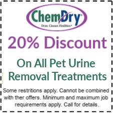 20% off all pet urine removal treatment