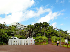Photo: Looking up at our dorm from the beach.