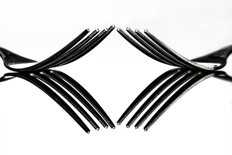 Tween forks di Elena Pardini