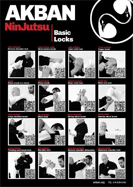 Photo: Ninjutsu armlocks - AKBAN QR poster 1